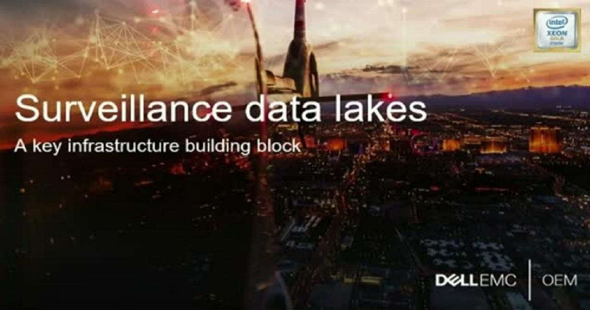 Surveillance data lake: a critical infrastructure building block