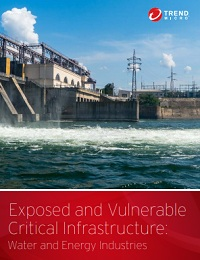 EXPOSED AND VULNERABLE CRITICAL INFRASTRUCTURE: WATER AND ENERGY INDUSTRIES