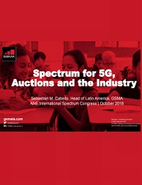 SPECTRUM FOR 5G, AUCTIONS AND THE INDUSTRY