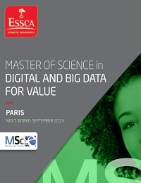 MASTER OF SCIENCE IN DIGITAL AND BIG DATA FOR VALUE